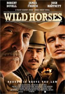 Постер Дикие лошади